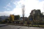 beautiful day!