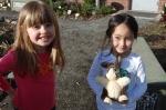 The bunny gets garden time also
