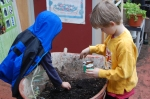 Compost & Potting soil