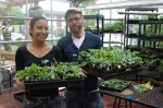 Alleycat Acres is transforming vacant lots into urban farms!