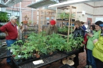 6 Elementary Schools came for a tour and plants