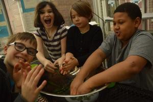 Kale Family